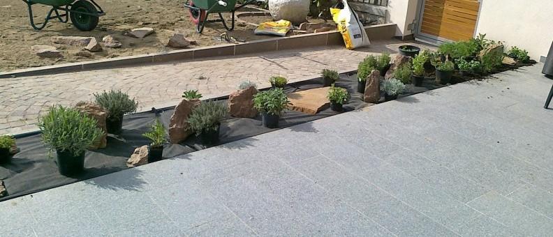 gartengestaltung pflanzen